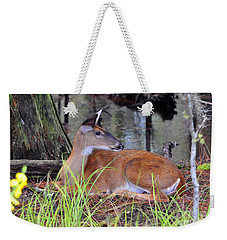 Weekender Tote Bag featuring the photograph Drowsy Deer by Al Powell Photography USA