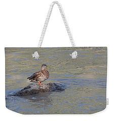 Duck Alone On The Rock Weekender Tote Bag
