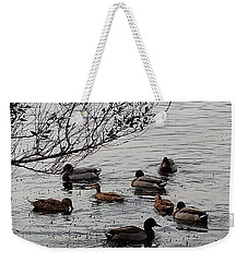 Duck Love Weekender Tote Bag by Steve Sperry
