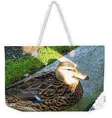 Duck Melanie Tweed In  The Sun Weekender Tote Bag