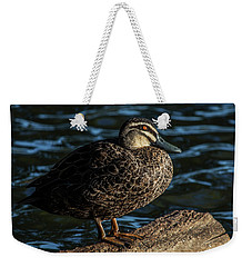 Duck On A Log Weekender Tote Bag