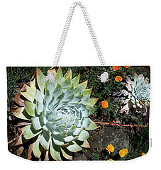 Weekender Tote Bag featuring the photograph Dudleya And California Puppy by Catherine Lau