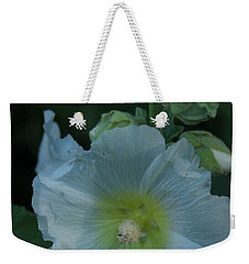 Weekender Tote Bag featuring the photograph Dust by Joseph Yarbrough