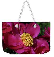 Weekender Tote Bag featuring the photograph Dusted In Peony Pollen by Rachel Cohen