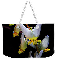 Weekender Tote Bag featuring the photograph Dutchmans Breeches by Barbara Bowen