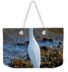 Eager Egret Weekender Tote Bag by DigiArt Diaries by Vicky B Fuller