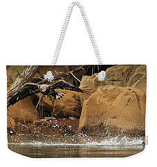 Weekender Tote Bag featuring the photograph Eagle Attack by Douglas Stucky
