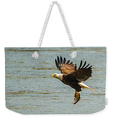 Eagle Departing With Prize Close-up Weekender Tote Bag by Jeff at JSJ Photography