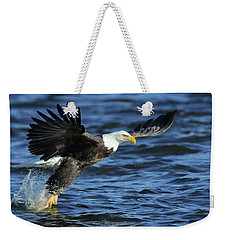 Weekender Tote Bag featuring the photograph Eagle Fish Grab by Coby Cooper