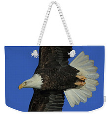 Weekender Tote Bag featuring the photograph Eagle Flying Closeup by Coby Cooper