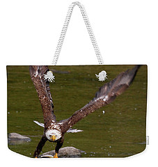 Weekender Tote Bag featuring the photograph Eagle Fying With Fish by Debbie Stahre