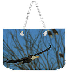 Weekender Tote Bag featuring the photograph Eagle Gang by Coby Cooper