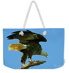Eagle Mom, The Scolding Weekender Tote Bag