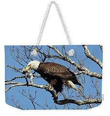 Eagle Nest Building Weekender Tote Bag by TnBackroadsPhotos