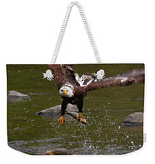 Weekender Tote Bag featuring the photograph Eagle Over Seal Rock by Debbie Stahre