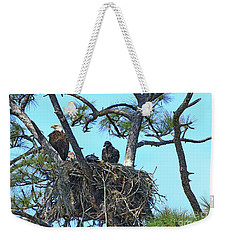 Weekender Tote Bag featuring the photograph Eagle Series Baby by Deborah Benoit