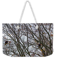 Weekender Tote Bag featuring the photograph Eagle Staring Competition by Jeff at JSJ Photography