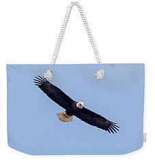 Weekender Tote Bag featuring the photograph Eagle Watch 2018 by Ricky L Jones