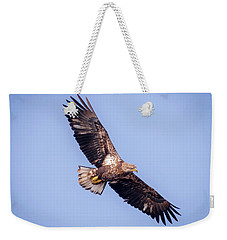 Weekender Tote Bag featuring the photograph Eagle Watch 2018 - Third Year Bald Eagle  by Ricky L Jones