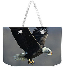 Weekender Tote Bag featuring the photograph Eagle With Small Fish by Coby Cooper
