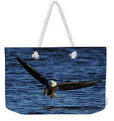 Weekender Tote Bag featuring the photograph Eagle With Talons Up by Coby Cooper