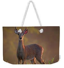 Early Buck Weekender Tote Bag