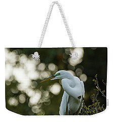 Weekender Tote Bag featuring the photograph Early Morning by Gregg Southard