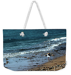 Weekender Tote Bag featuring the photograph Early Morning Stroll by Baggieoldboy