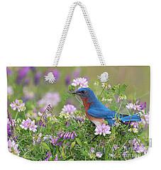 Eastern Bluebird - D010120 Weekender Tote Bag