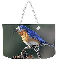 Eastern Bluebird In Spring Weekender Tote Bag