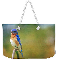 Weekender Tote Bag featuring the photograph Eastern Bluebird Painted Effect by Heidi Hermes