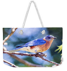 Eastern Bluebird Weekender Tote Bag