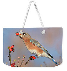 Eastern Bluebird With Berry Weekender Tote Bag by Alan Lenk
