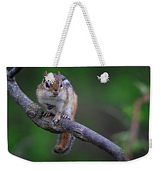 Eastern Chipmunk Weekender Tote Bag