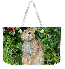 Eastern Cottontail Weekender Tote Bag by Ricky L Jones