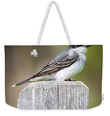 Weekender Tote Bag featuring the photograph Eastern Kingbird 2018 by Ricky L Jones