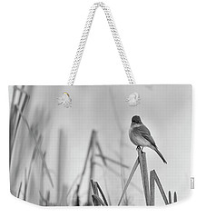 Eastern Phoebe 2017 Weekender Tote Bag by Thomas Young