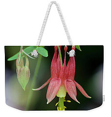 Weekender Tote Bag featuring the photograph Eastern Red Columbine - D010104 by Daniel Dempster