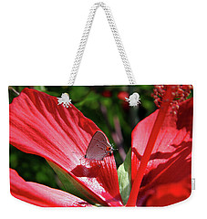 Eastern Tailed Blue Butterfly On Red Flower Weekender Tote Bag