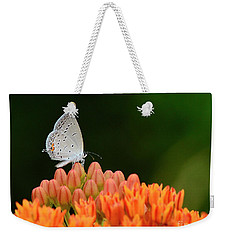 Eastern Tailed Blue On Butterfly Weed Weekender Tote Bag