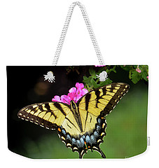 Eastern Tiger Swallowtail Weekender Tote Bag by Amy Porter