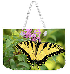 Eastern Tiger Swallowtail Butterfly Weekender Tote Bag by Sheila Brown