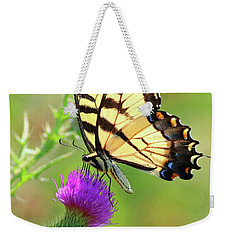 Eastern Tiger Swallowtail Weekender Tote Bag