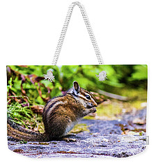 Weekender Tote Bag featuring the photograph Eating Chipmunk by Jonny D