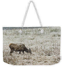 Eating Snow Maybe Weekender Tote Bag
