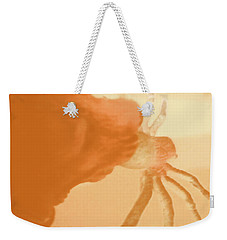 Weekender Tote Bag featuring the photograph Eating Spiders II by Carolina Liechtenstein