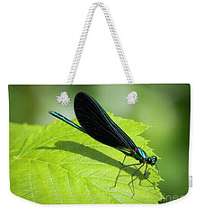 Weekender Tote Bag featuring the photograph Ebony Jewelwing by Ricky L Jones
