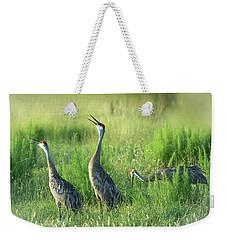 Sandhill Cranes In A Misty Meadow  Weekender Tote Bag
