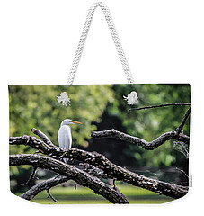 Egret Able Weekender Tote Bag