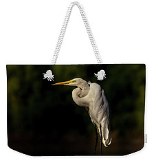 Weekender Tote Bag featuring the photograph Egret On Deck Rail by Robert Frederick